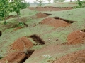 Contour trenches